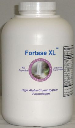 Picture of 800 Fortase XL enteric coated systemic enzyme capsules